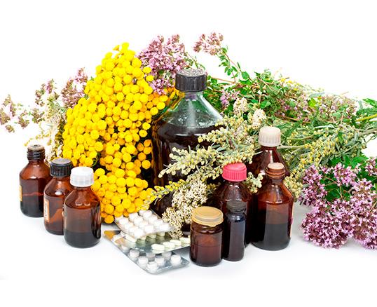 """Grigori Grabovoi – """"O número de plantas para a recuperação do corpo"""""""