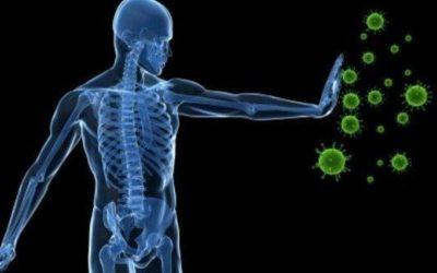"""""""Nosso sistema imunológico está protegido contra qualquer vírus"""" – Por Grigori Grabovoi"""