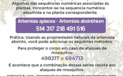 Concentração no número de plantas para restauração do organismo